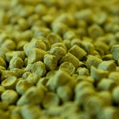 Cascade pellet T90 BIO